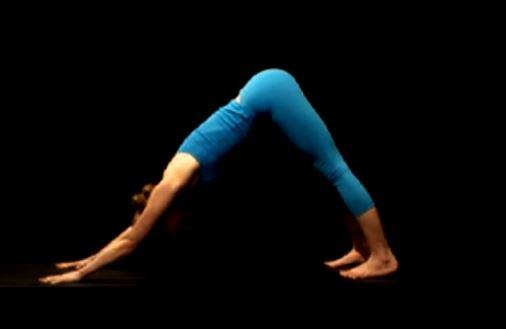 Yoga Asana: Downward facing dog